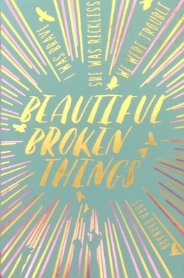 Image result for beautiful broken things barnard